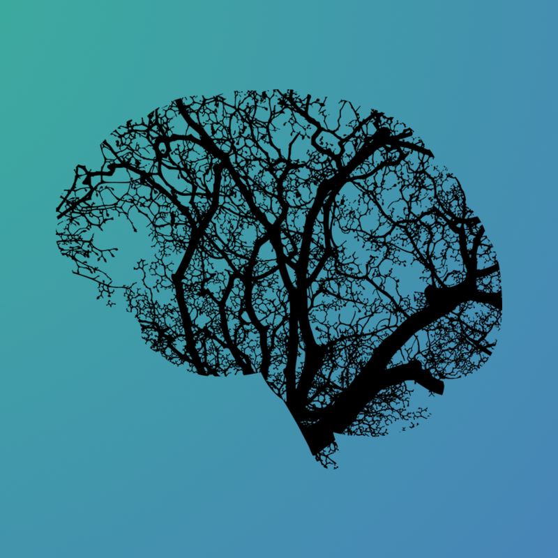 How Deep Learning and Neuroimaging Can Improve Diagnosis in Psychiatric Diseases
