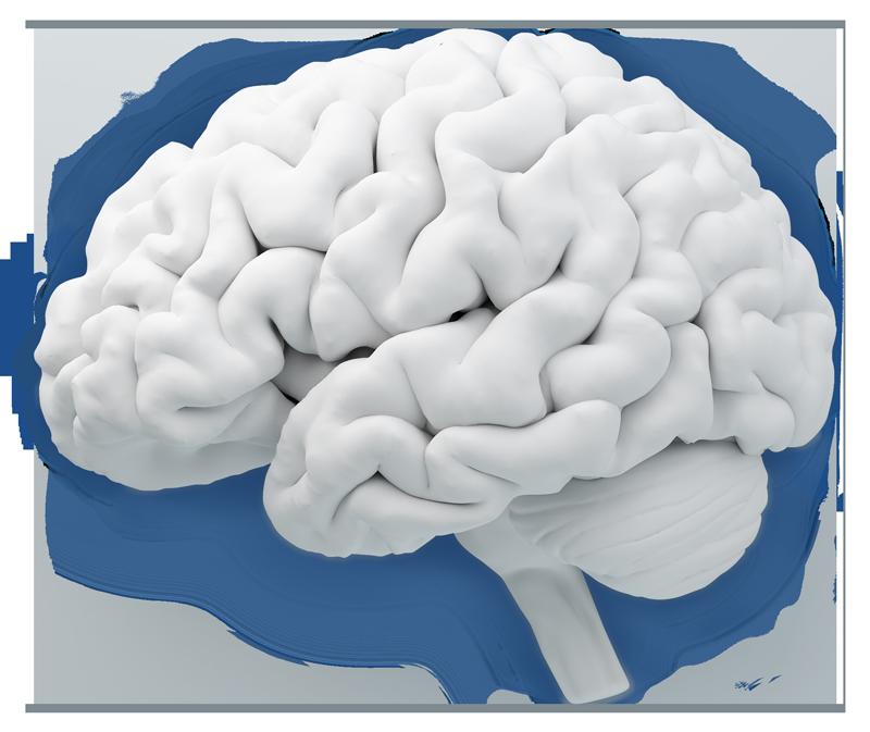 Neuroimaging AI analysis software